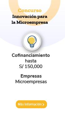 Innovacion para la Microempresa